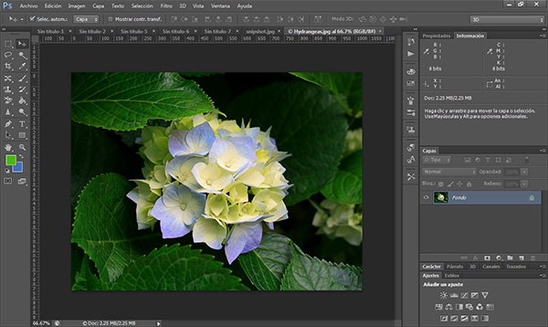 Editor photoshop download - 5b