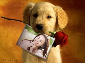 Día de San Valentín: Marcos para fotos de PicJoke