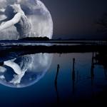 LoonaPix: Fotomontaje en la luna